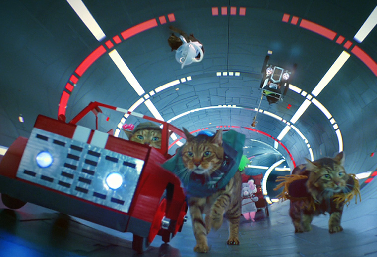 Virgin Media has created a meow-nificent piece of social content