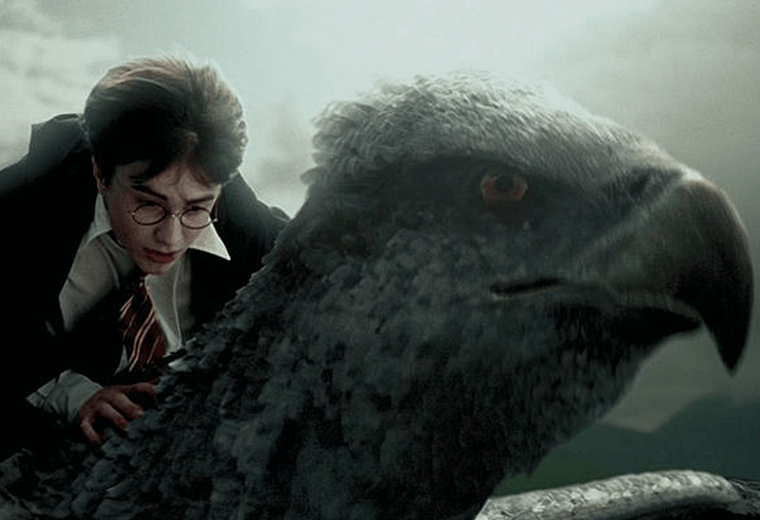 The Hippogriff gives Harry a joyous tour of Hogwarts by air.