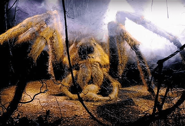 """Follow the spiders!"" said Hagrid."