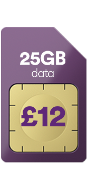 25gb for £12